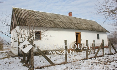 Eladó Ház, Bács-Kiskun megye, Kecskemét, Felújítandó tanya, nagy területtel, gyümölcsössel